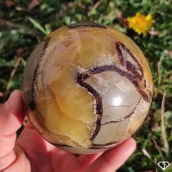 Sphère de Septaria - Pierre de collection de Madagascar