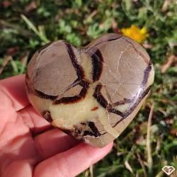 Coeur de Septaria naturelle de Madagascar