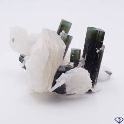 Tourmaline sur gangue - Pierre de collection du Pakistan