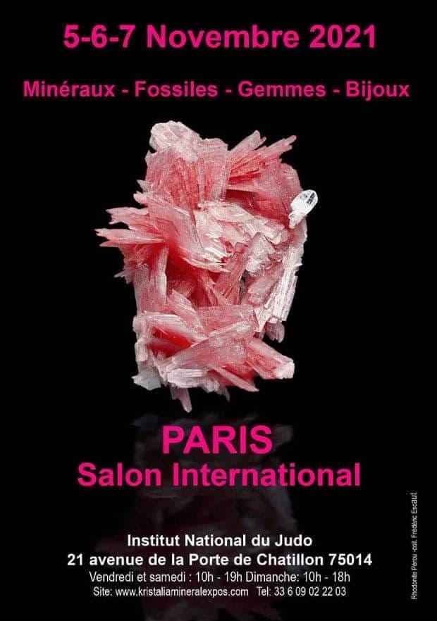 Salon international des Minéraux de Paris (75)
