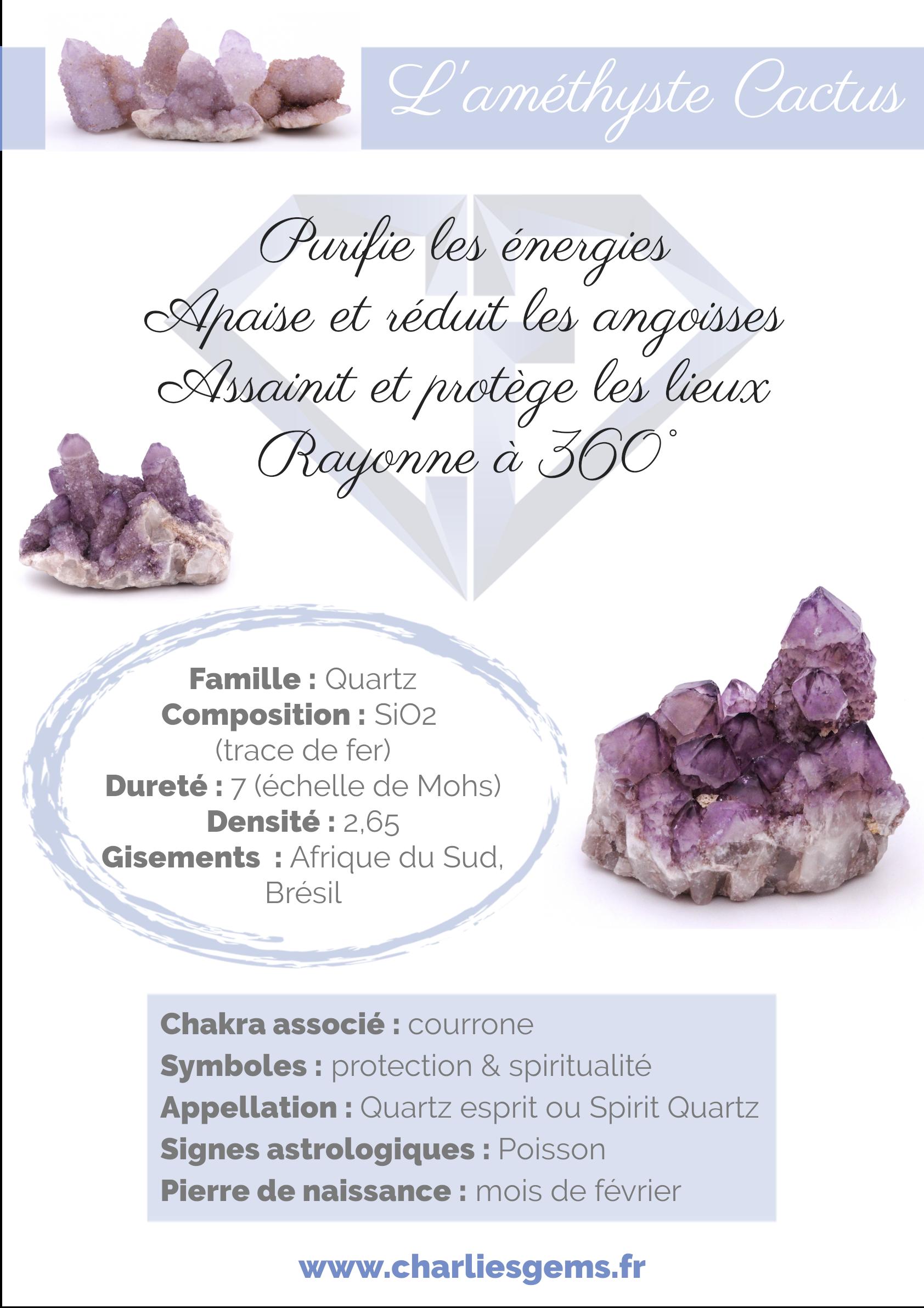 Fiche de présentation de l'Améthyste Cactus (description, lithothérapie, propriétés) - Par Charlie's Gems
