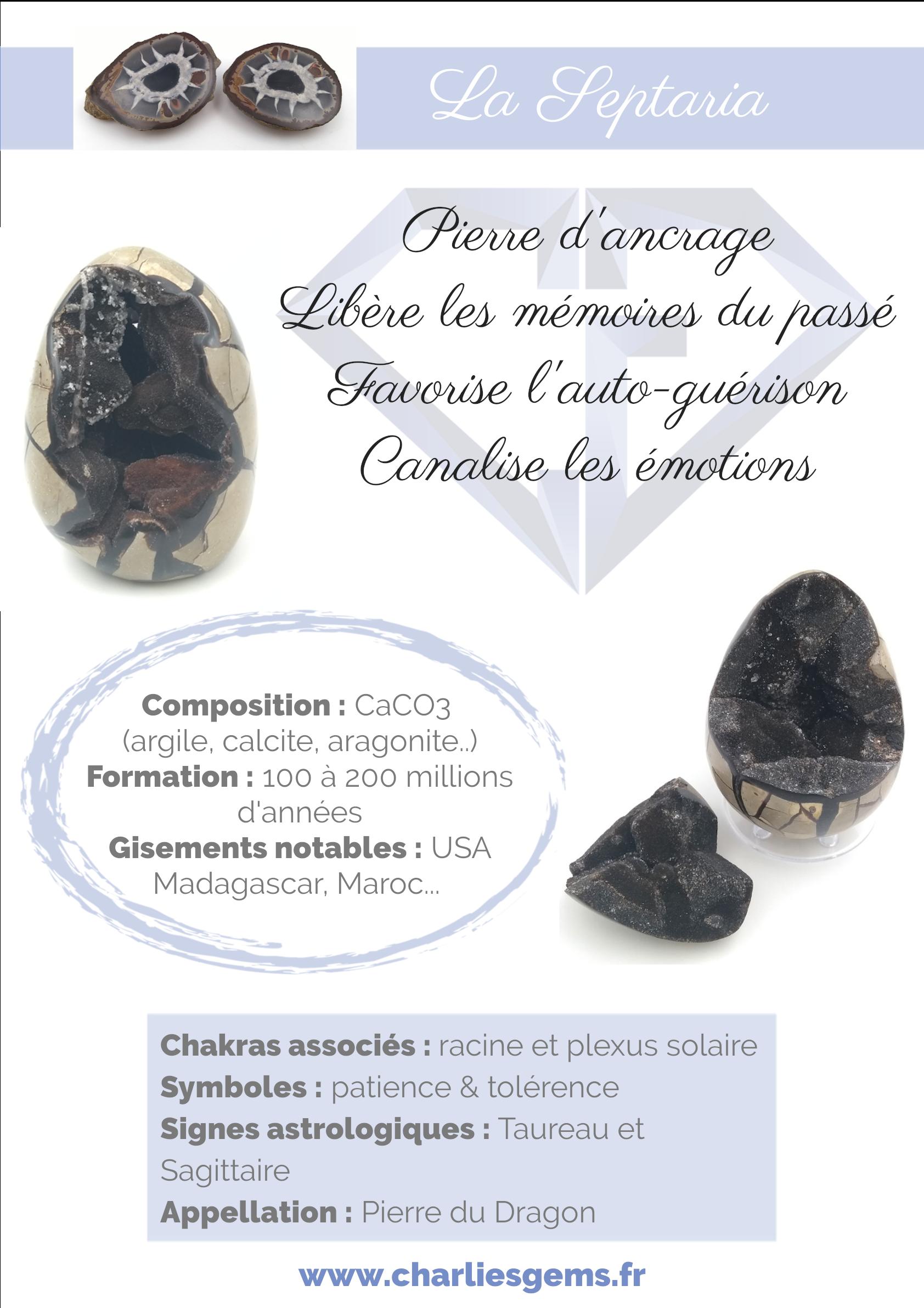Fiche de présentation de la Septaria (description, lithothérapie, propriétés) - Par Charlie's Gems